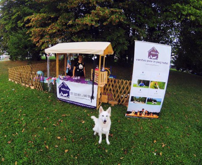 Festival za ljubitelje živali
